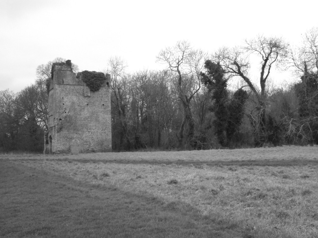 Lanestown Castle, Newbridge Demesne
